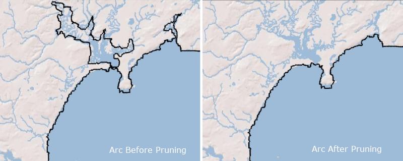 Prune arc example